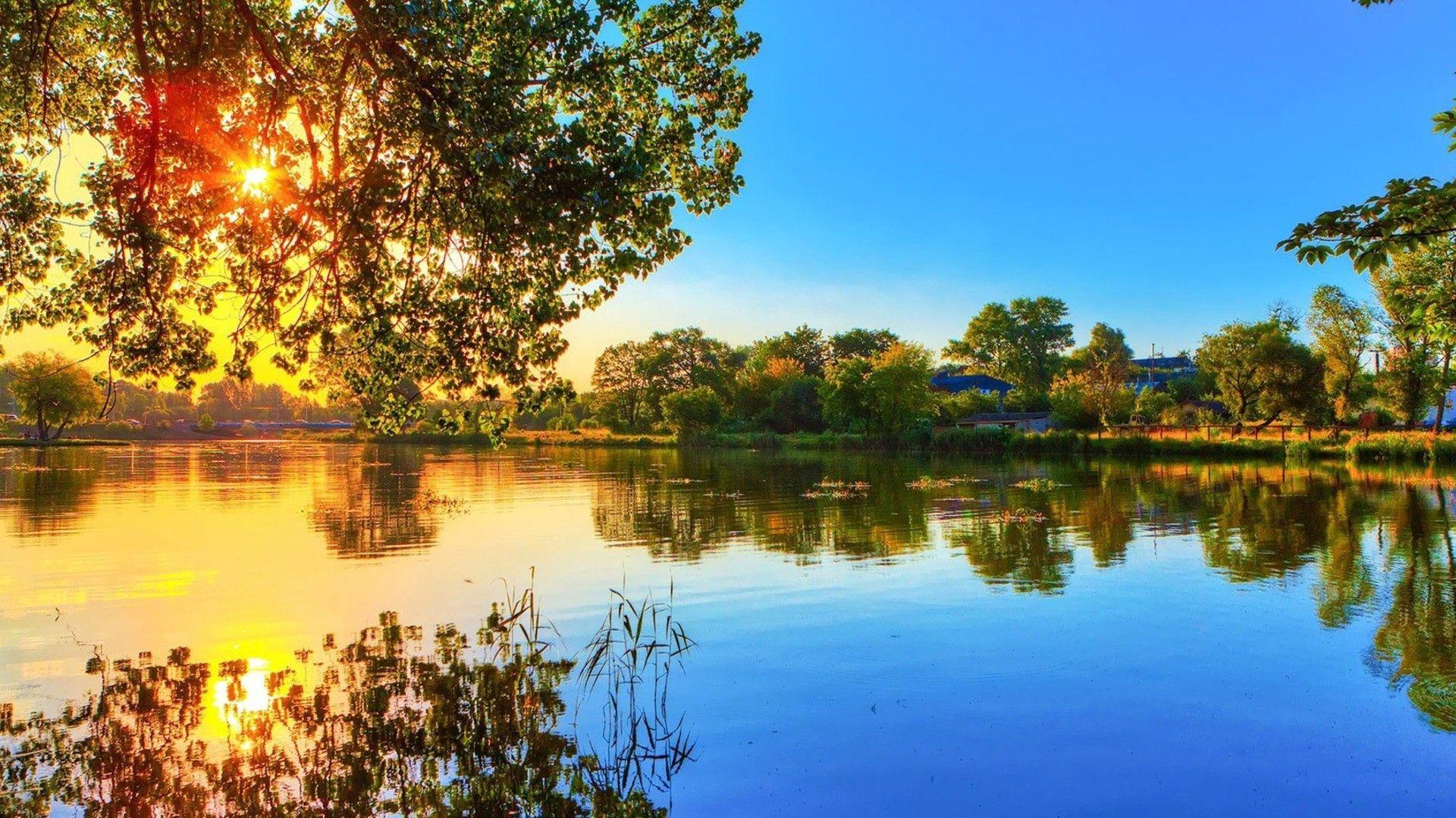 142730 скачать обои Свет, Река, Деревья, Природа - заставки и картинки бесплатно