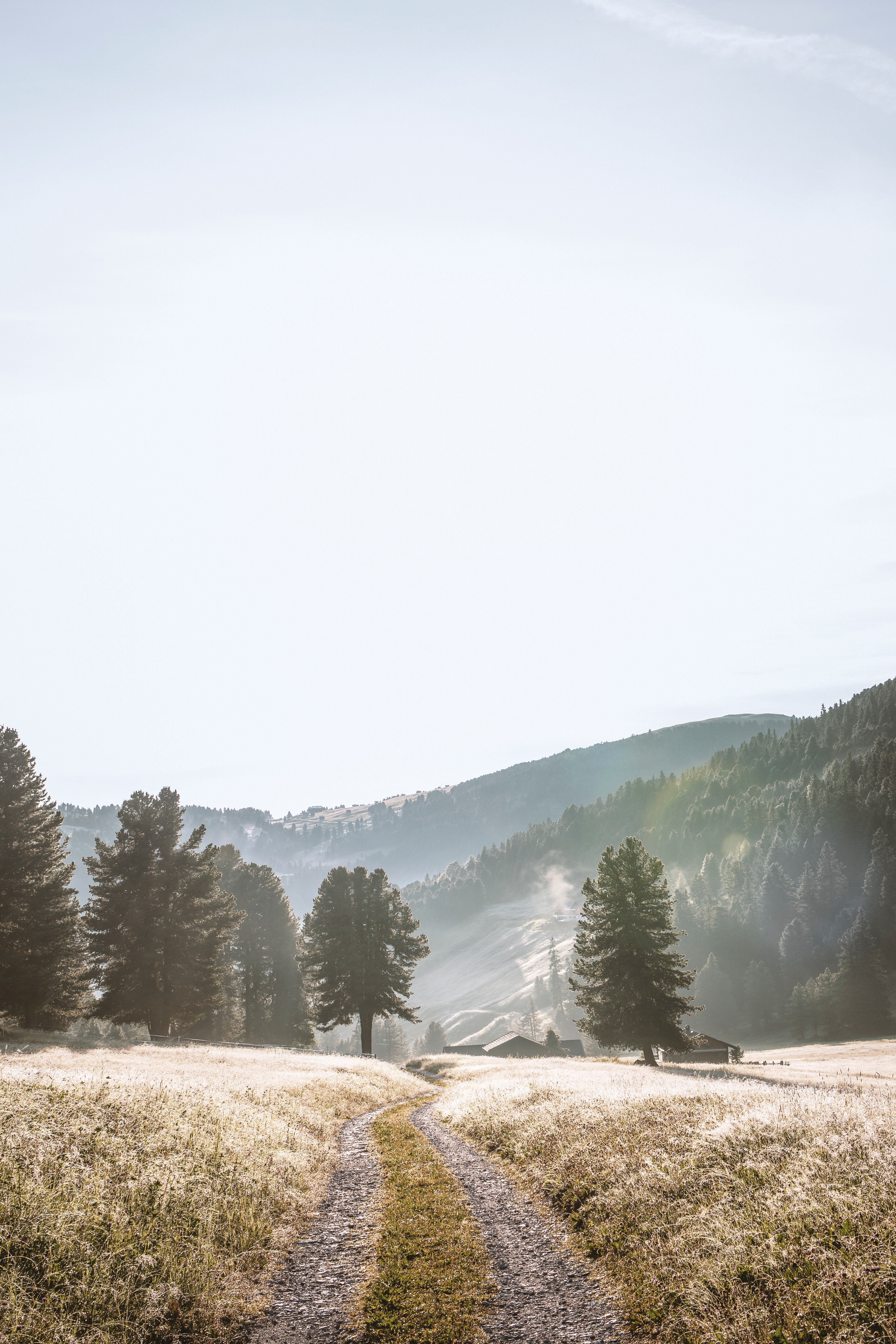 107043 download wallpaper Nature, Road, Fog, Trees, Mountains, Landscape screensavers and pictures for free