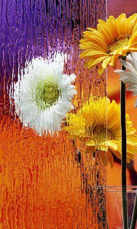 37846 télécharger le fond d'écran Plantes, Fleurs, Bouquets - économiseurs d'écran et images gratuitement