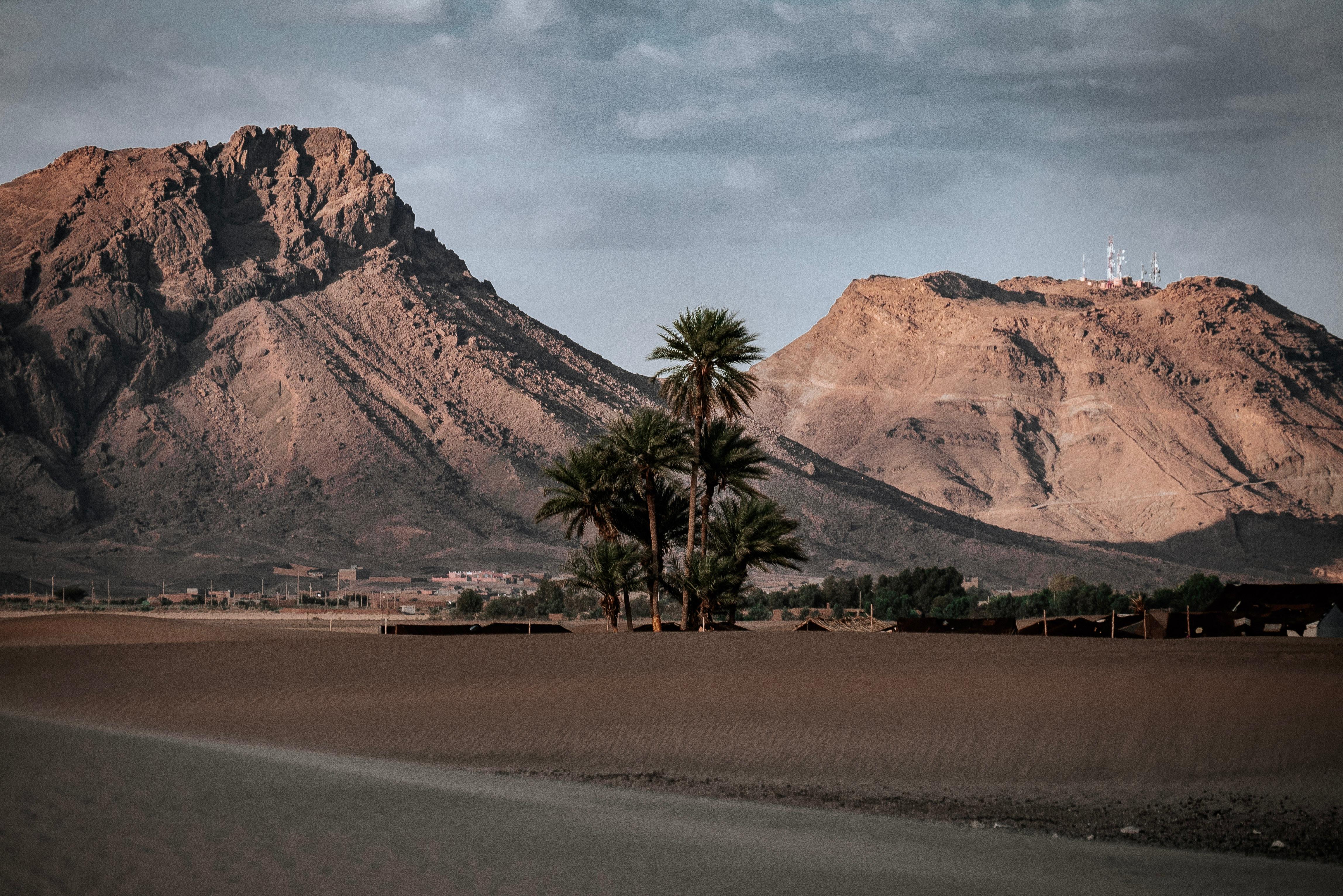 146420 Заставки и Обои Пустыня на телефон. Скачать Пустыня, Природа, Горы, Песок, Пальмы, Оазис картинки бесплатно
