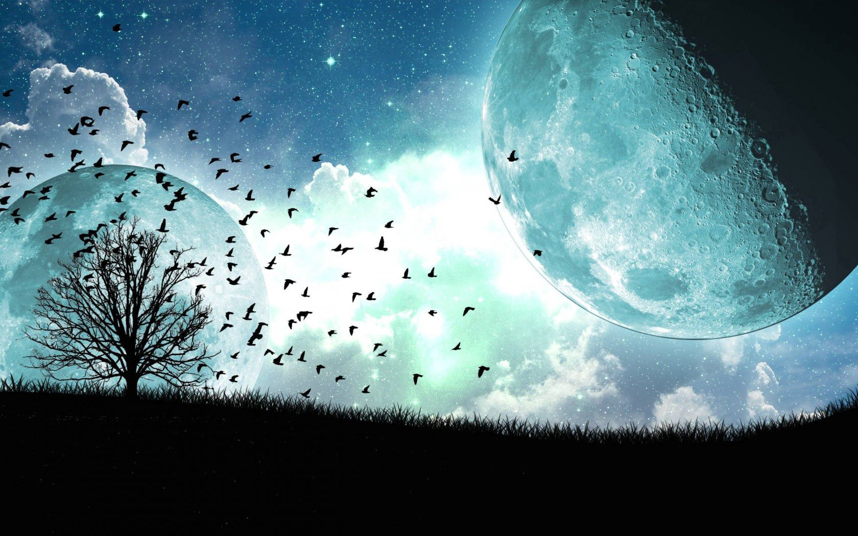89005 free wallpaper 720x1280 for phone, download images Birds, Art, Moon, Wood, Tree, Flight, Satellite 720x1280 for mobile