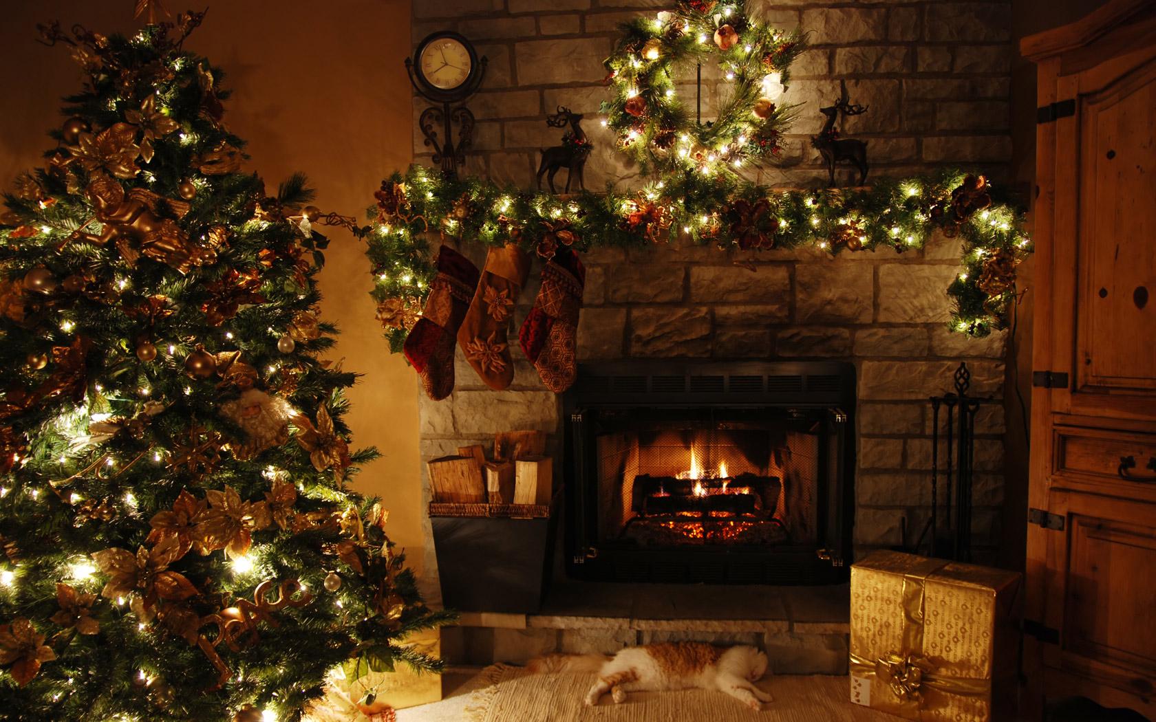 14046 скачать обои Новый Год (New Year), Рождество (Christmas, Xmas), Праздники, Деревья, Интерьер, Елки - заставки и картинки бесплатно