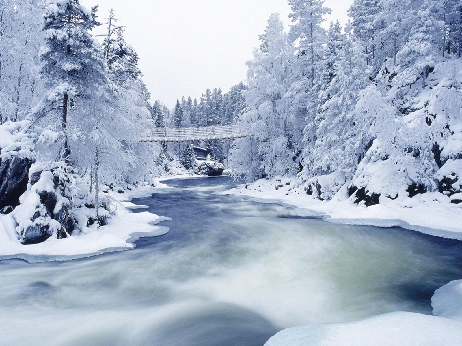 13336 скачать обои Пейзаж, Зима, Река, Деревья, Снег - заставки и картинки бесплатно