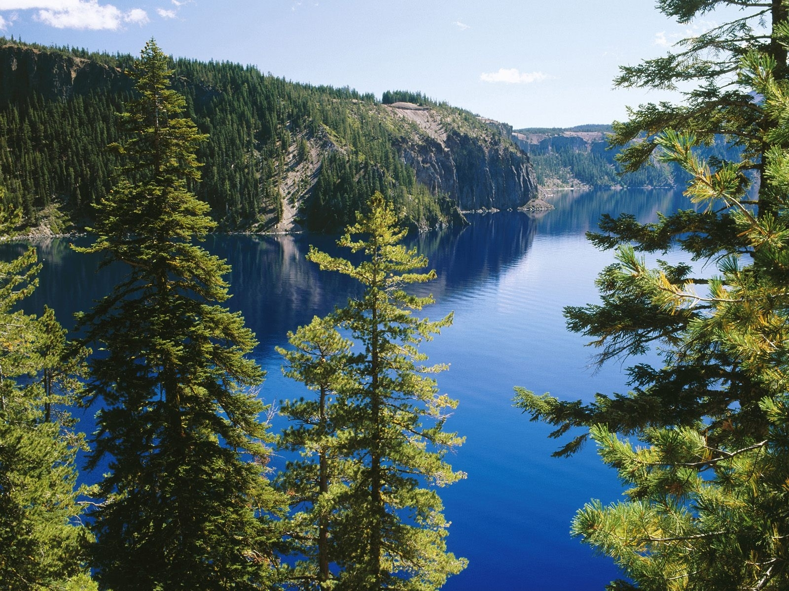 8232 download wallpaper Lakes, Landscape, Mountains, Fir-Trees screensavers and pictures for free