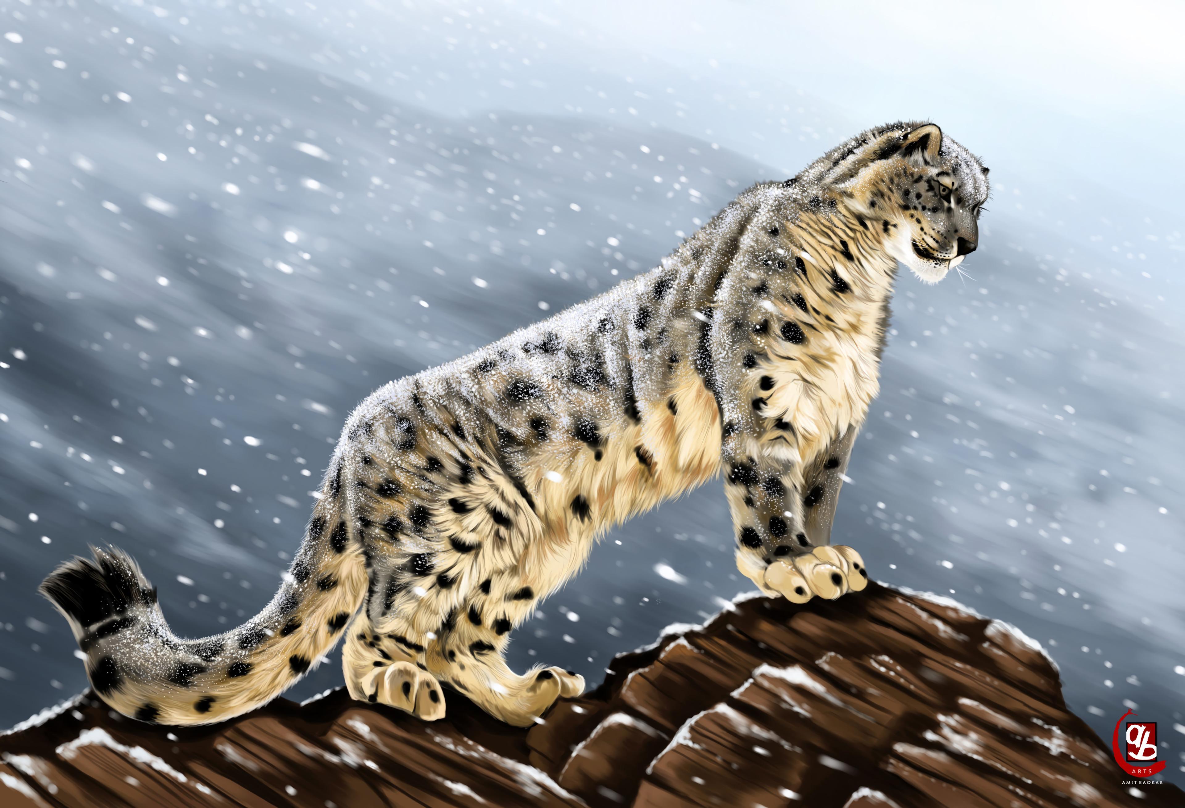 57318 download wallpaper Big Cat, Predator, Sight, Opinion, Stones, Art, Snow Leopard screensavers and pictures for free