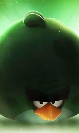 15404 télécharger le fond d'écran Jeux, Oiseaux, Angry Birds - économiseurs d'écran et images gratuitement
