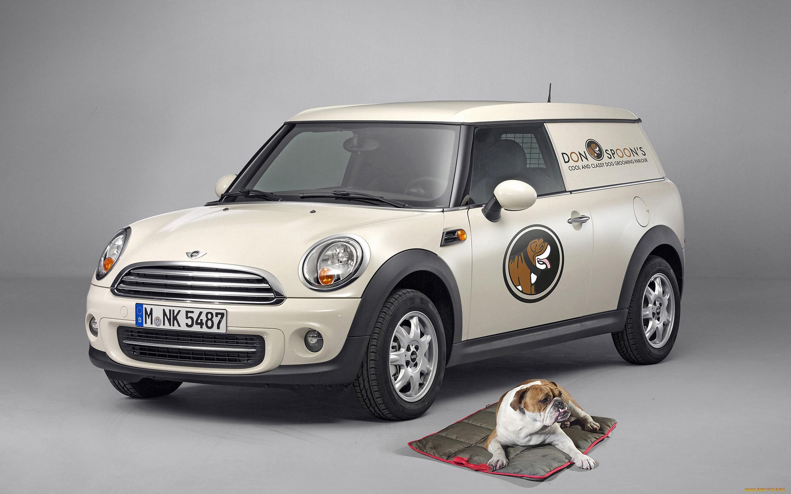 24987 скачать обои Транспорт, Животные, Машины, Собаки, Мини Купер (Mini Cooper) - заставки и картинки бесплатно