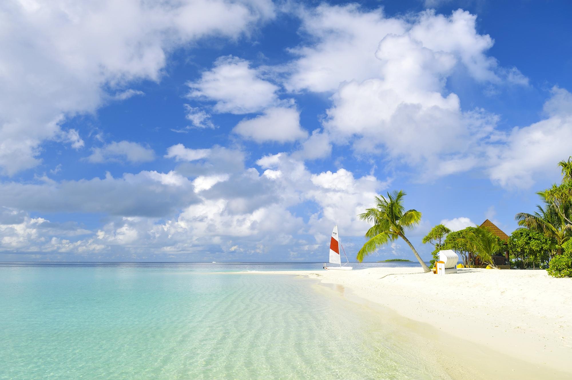56162 papel de parede 320x480 em seu telefone gratuitamente, baixe imagens Mar, Natureza, Praia, Areia, Palms, Trópicos, Iate 320x480 em seu celular