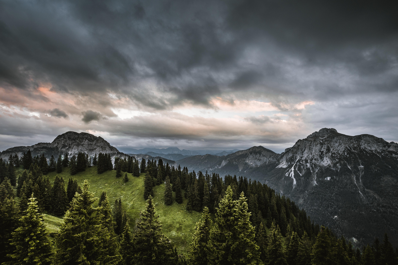 129039 descargar fondo de pantalla Bosque, Naturaleza, Árboles, Cielo, Montañas: protectores de pantalla e imágenes gratis