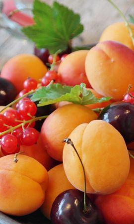 86620 télécharger le fond d'écran Nourriture, Abricots, Cerise, Groseille, Fruits, Baies - économiseurs d'écran et images gratuitement