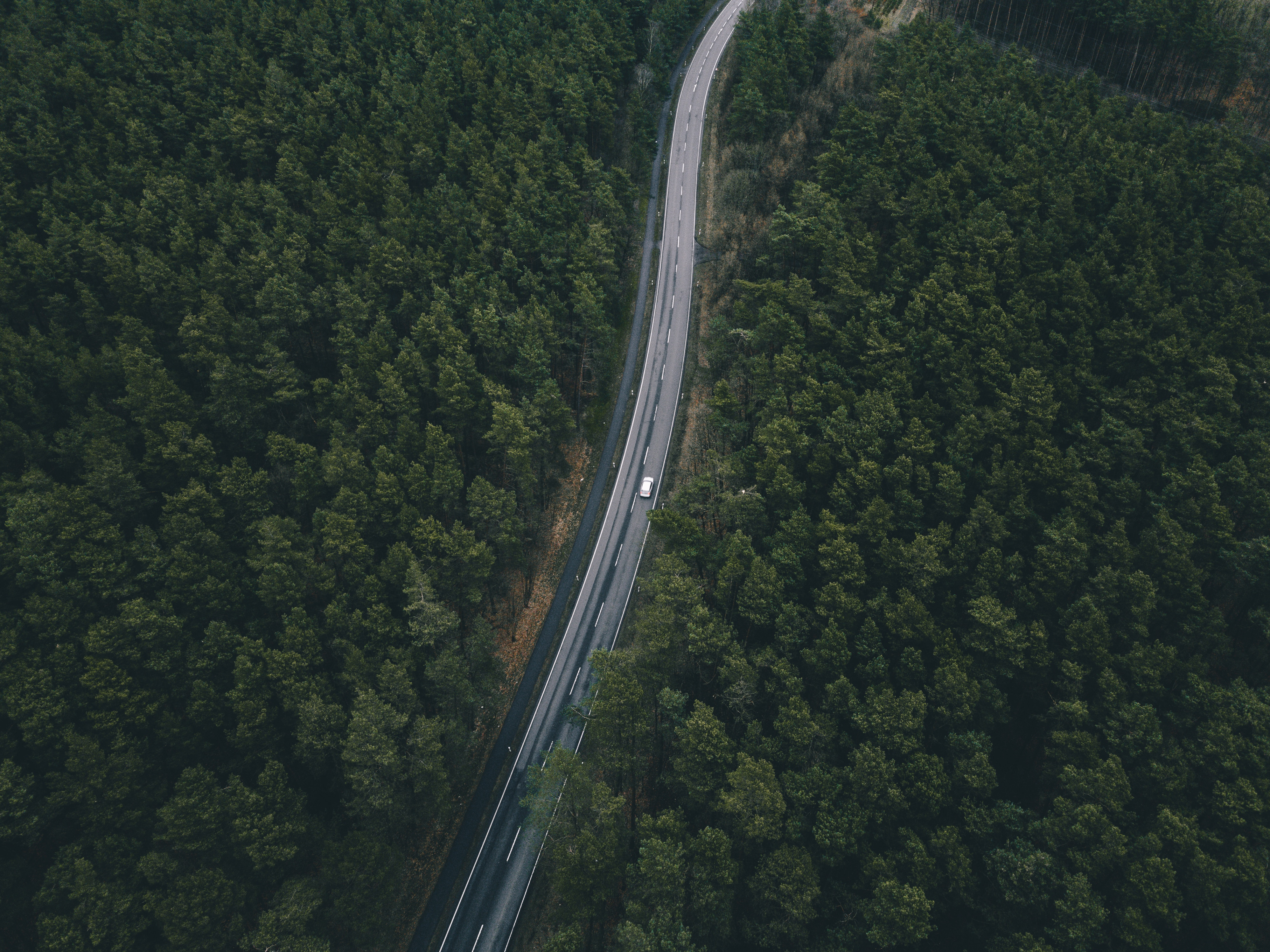 153635 Screensavers and Wallpapers Road for phone. Download Nature, Trees, View From Above, Road pictures for free
