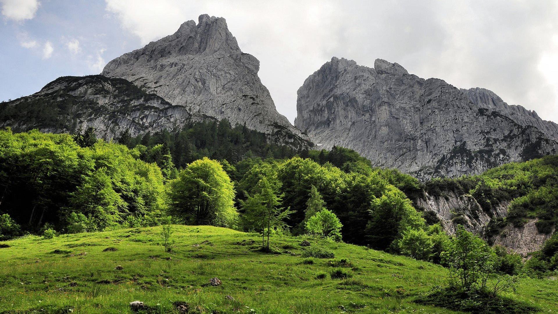 20323 скачать обои Пейзаж, Деревья, Горы - заставки и картинки бесплатно