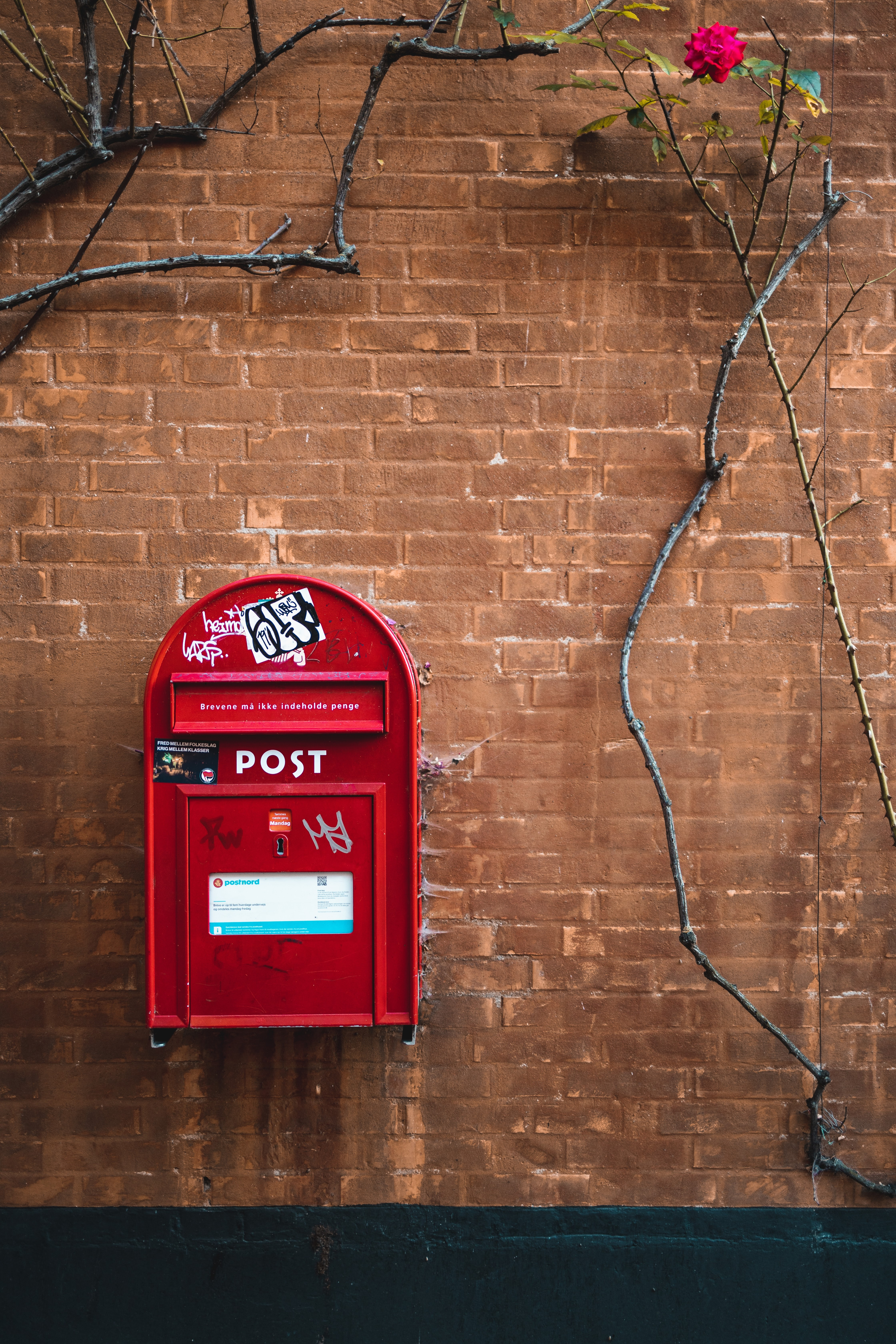 133806 download wallpaper Miscellanea, Miscellaneous, Post Office, Mail, Box, Wall, Brick Wall, Ivy screensavers and pictures for free