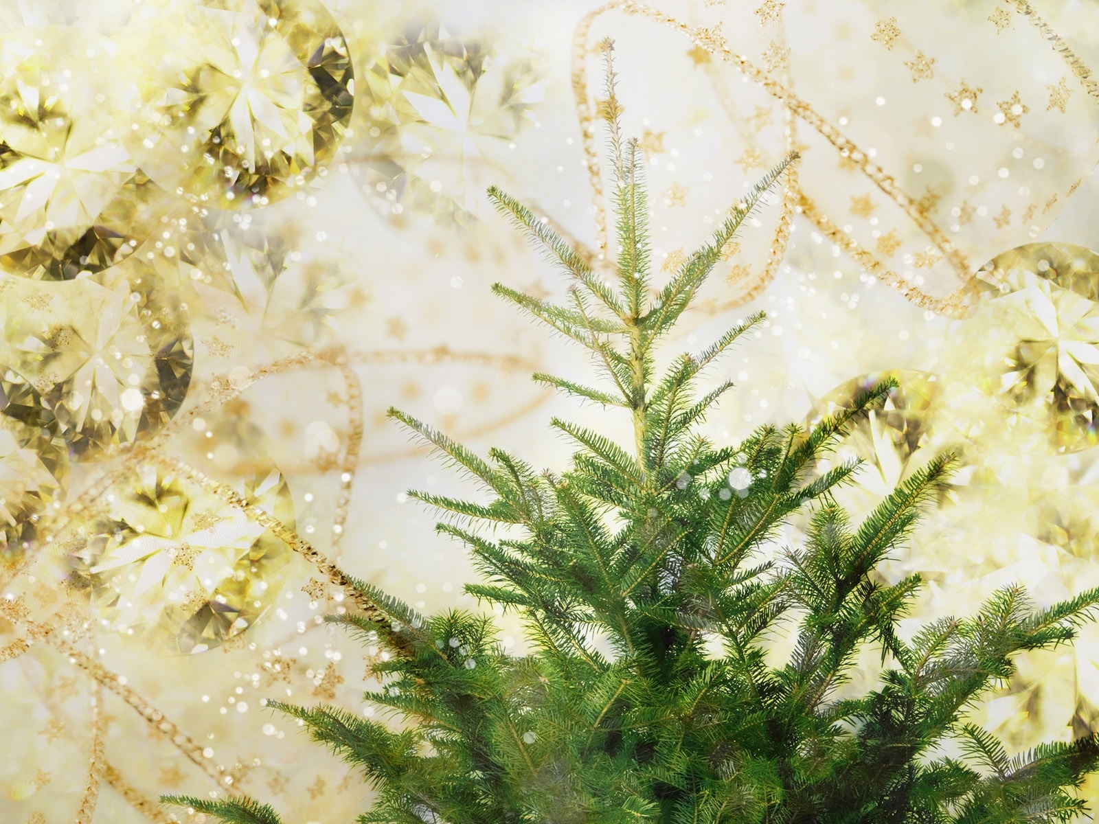 2277 скачать обои Растения, Деревья, Артфото, Елки - заставки и картинки бесплатно