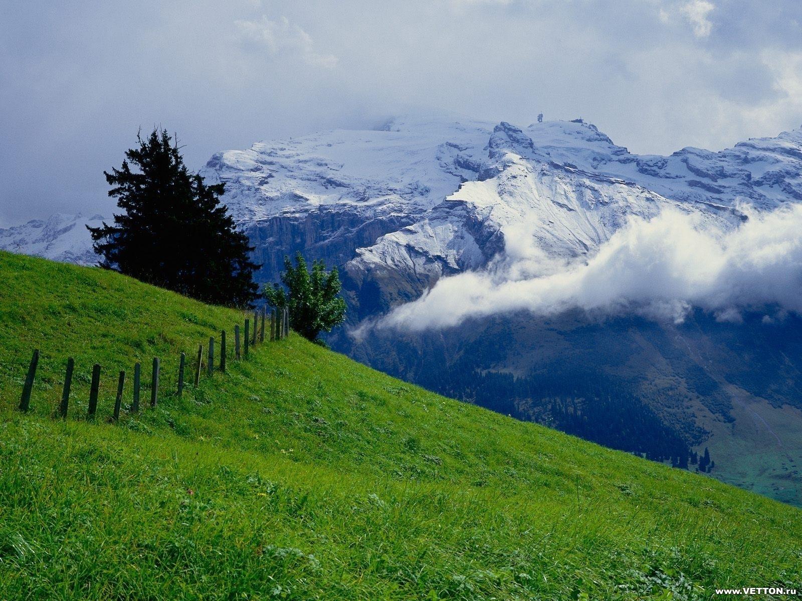 796 скачать обои Пейзаж, Трава, Горы - заставки и картинки бесплатно