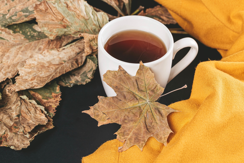 152504 скачать обои Разное, Чай, Чашка, Осень, Клен, Листья - заставки и картинки бесплатно