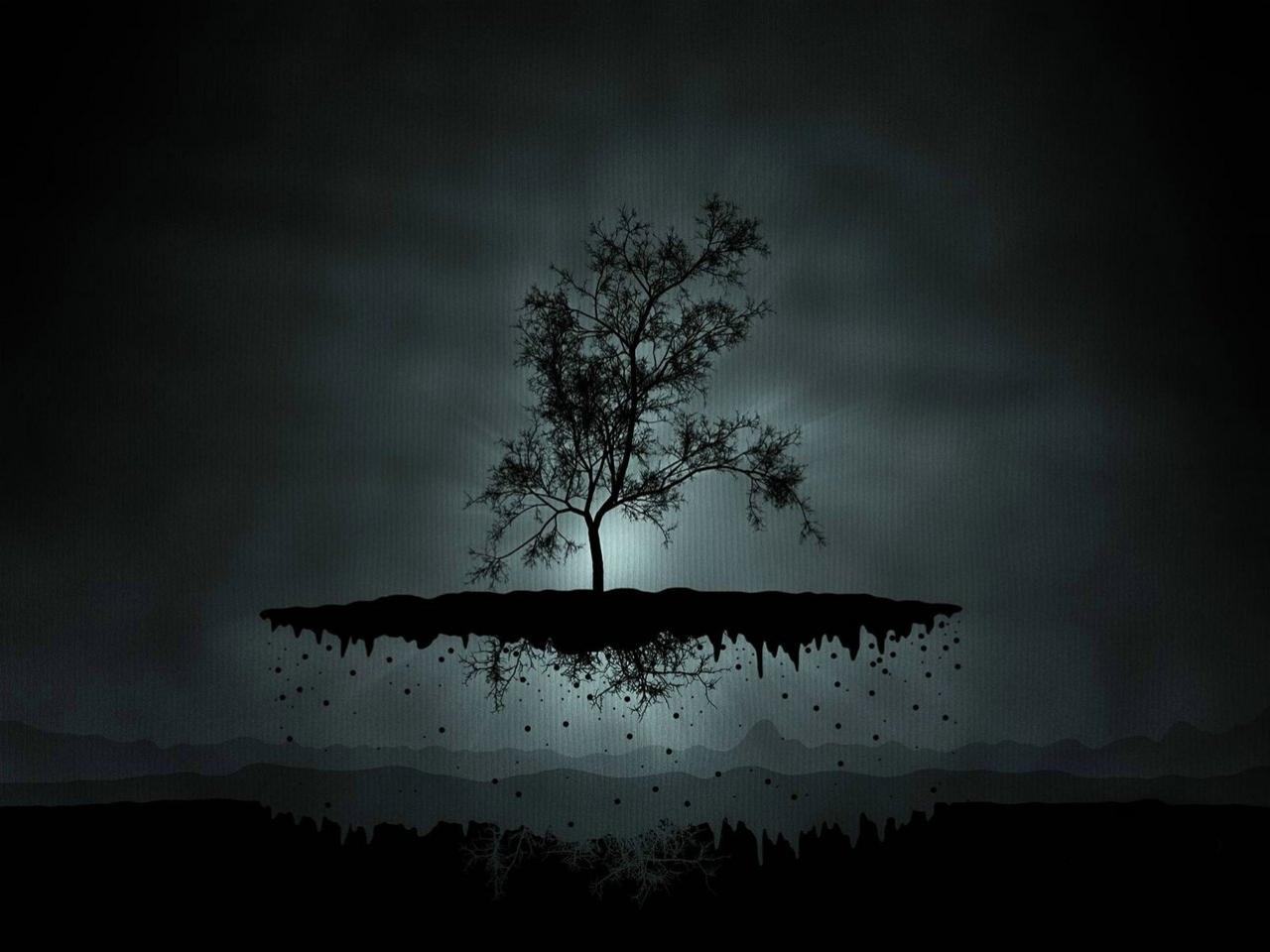 7283 скачать обои Растения, Деревья, Ночь - заставки и картинки бесплатно