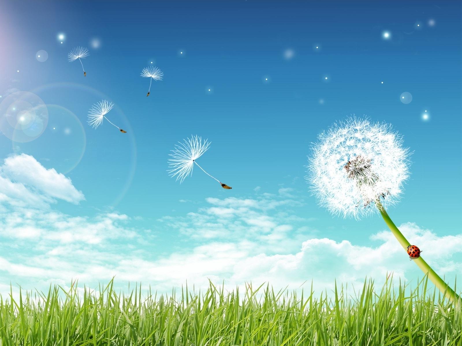 6942 fond d'écran 1125x2436 sur votre téléphone gratuitement, téléchargez des images Plantes, Paysage, Sky, Pissenlits, Dessins 1125x2436 sur votre mobile