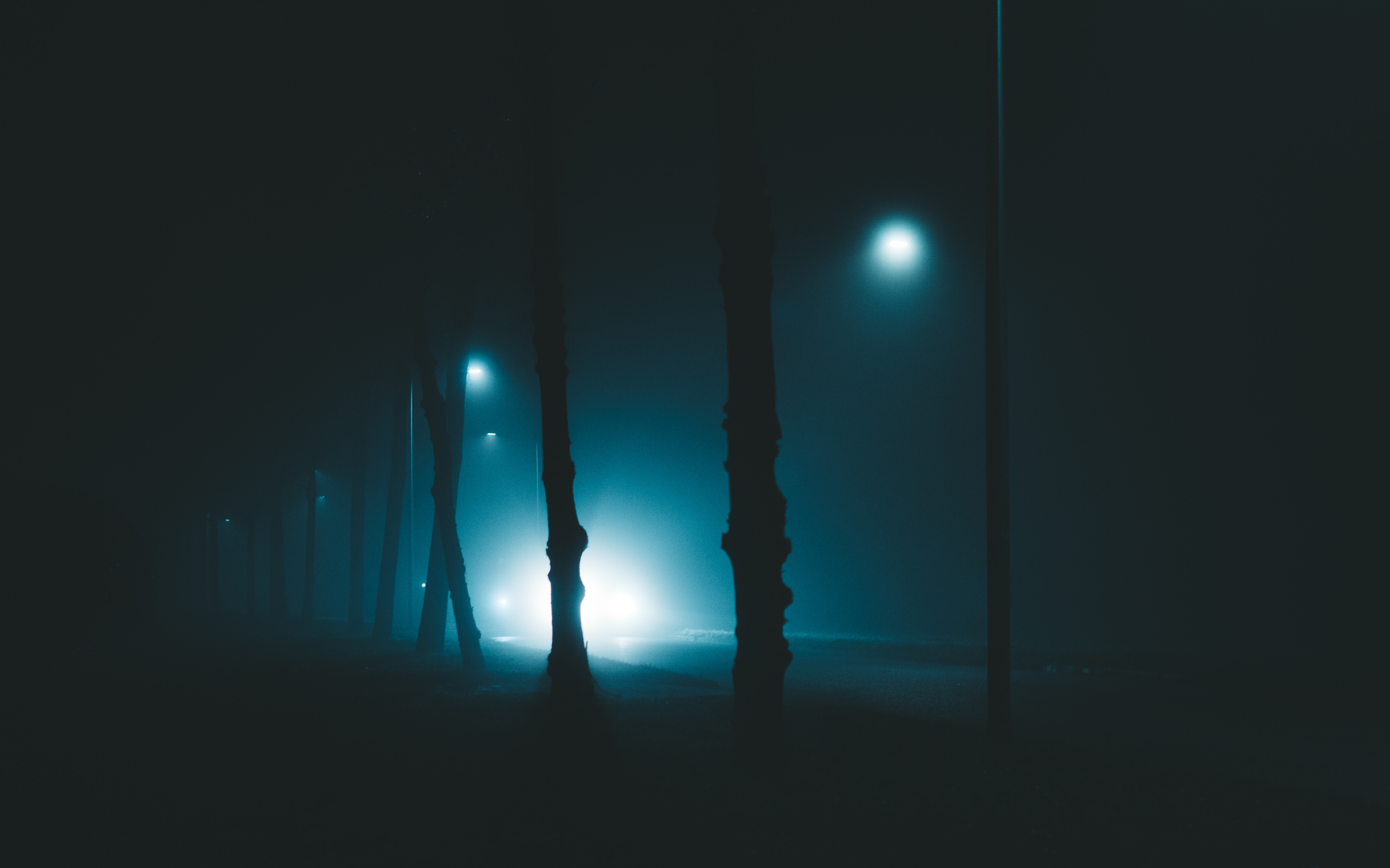 99948 download wallpaper Light, Trees, Night, Lights, Dark, Shine, Fog, Lanterns, Gloomy, Enveloping, Entthy screensavers and pictures for free