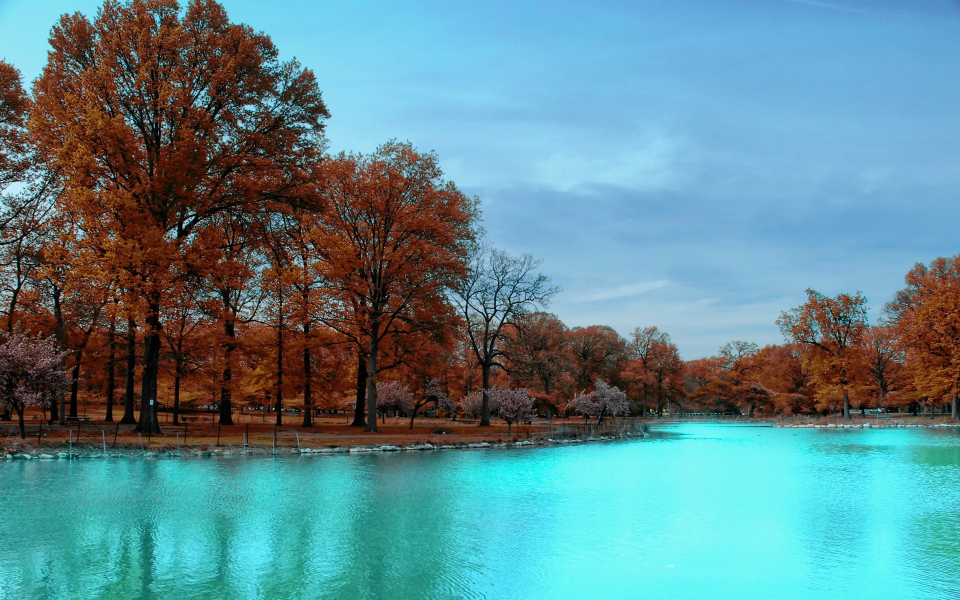 20717 download wallpaper Landscape, Rivers, Trees, Autumn screensavers and pictures for free
