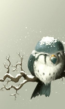 4194 download wallpaper Animals, Birds, Pictures screensavers and pictures for free