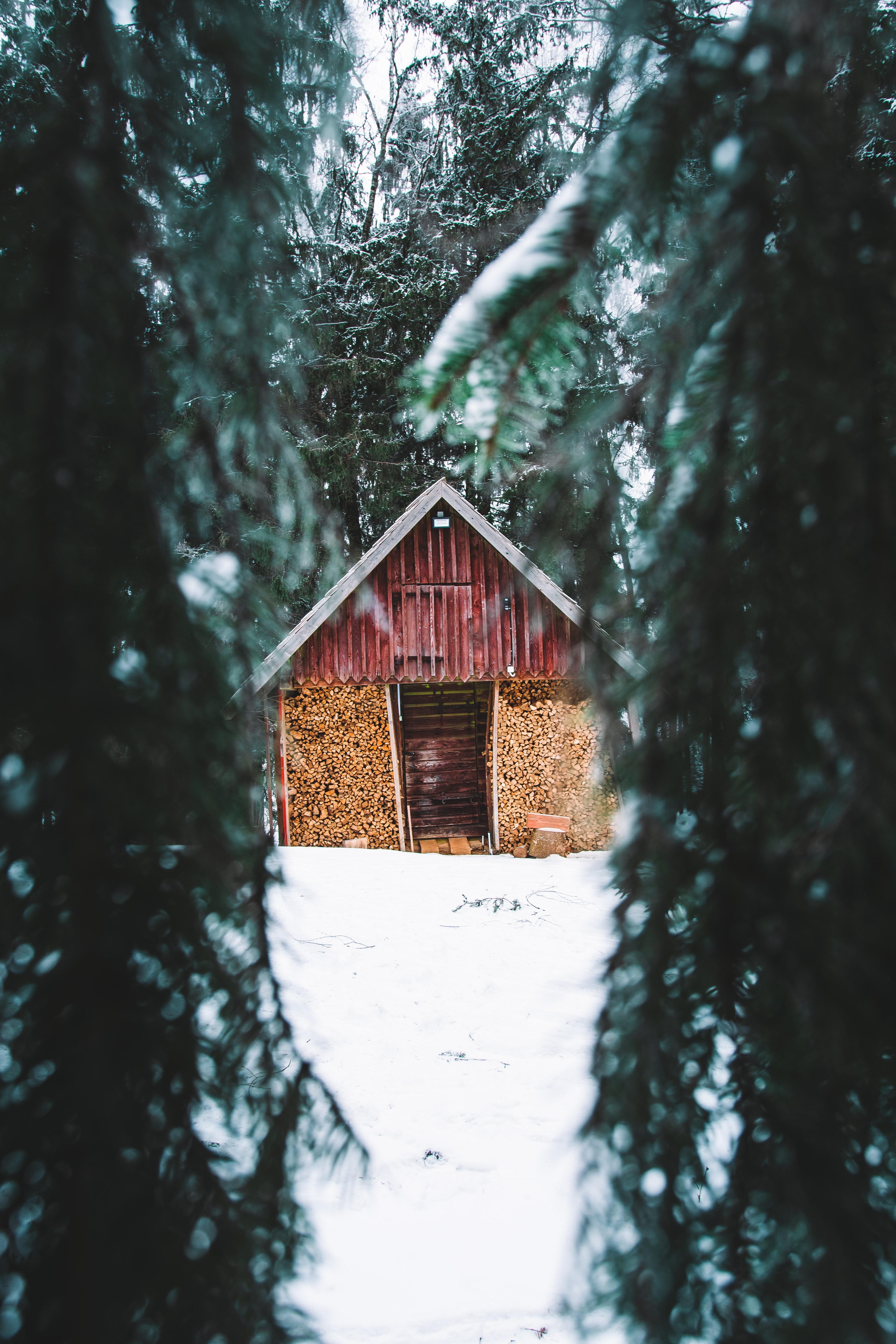 134749 скачать обои Хижина, Деревья, Снег, Природа, Зима, Елки - заставки и картинки бесплатно