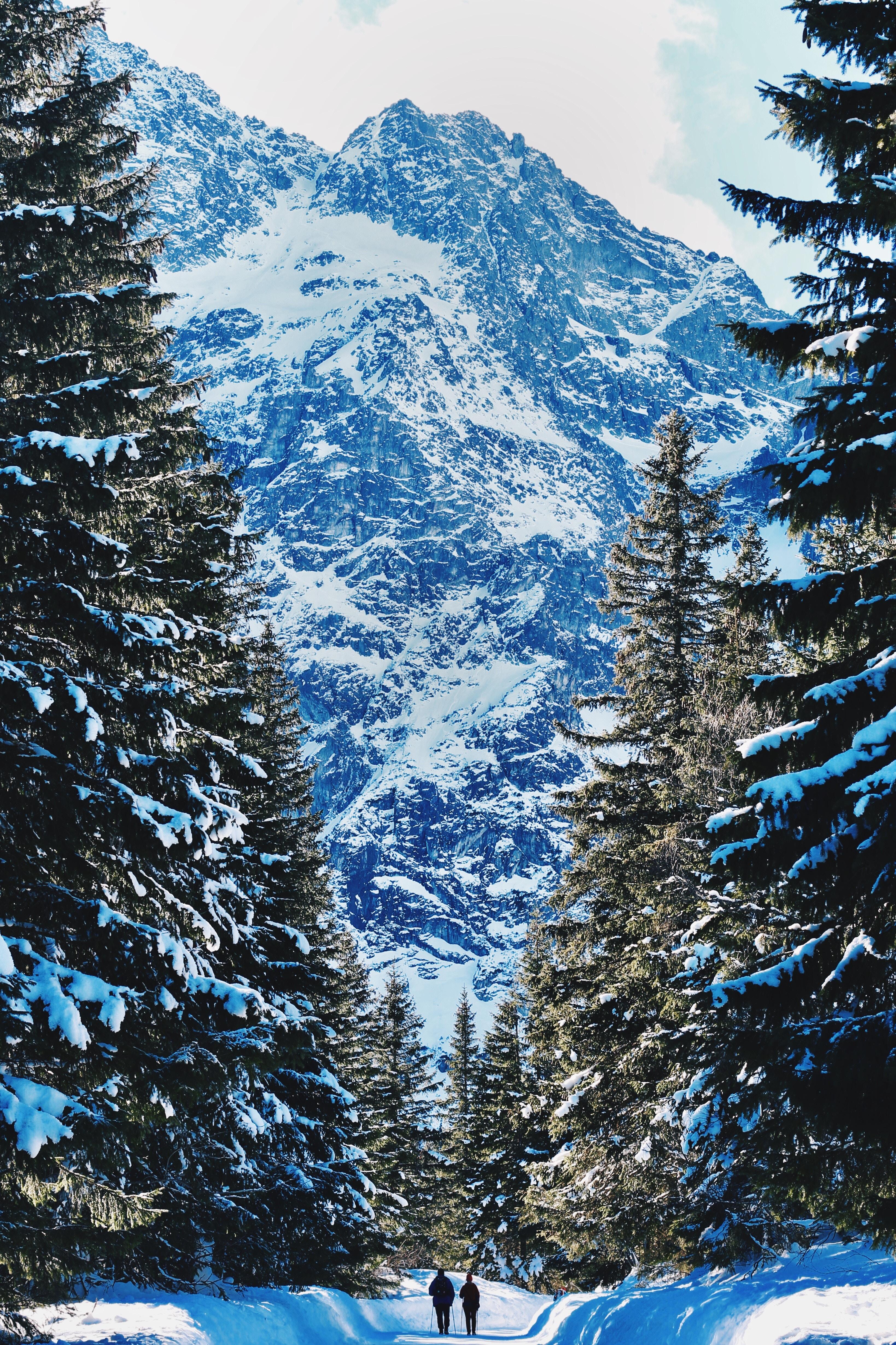 110249 завантажити шпалери Люди, Зима, Природа, Гори, Сніг, Ліс - заставки і картинки безкоштовно