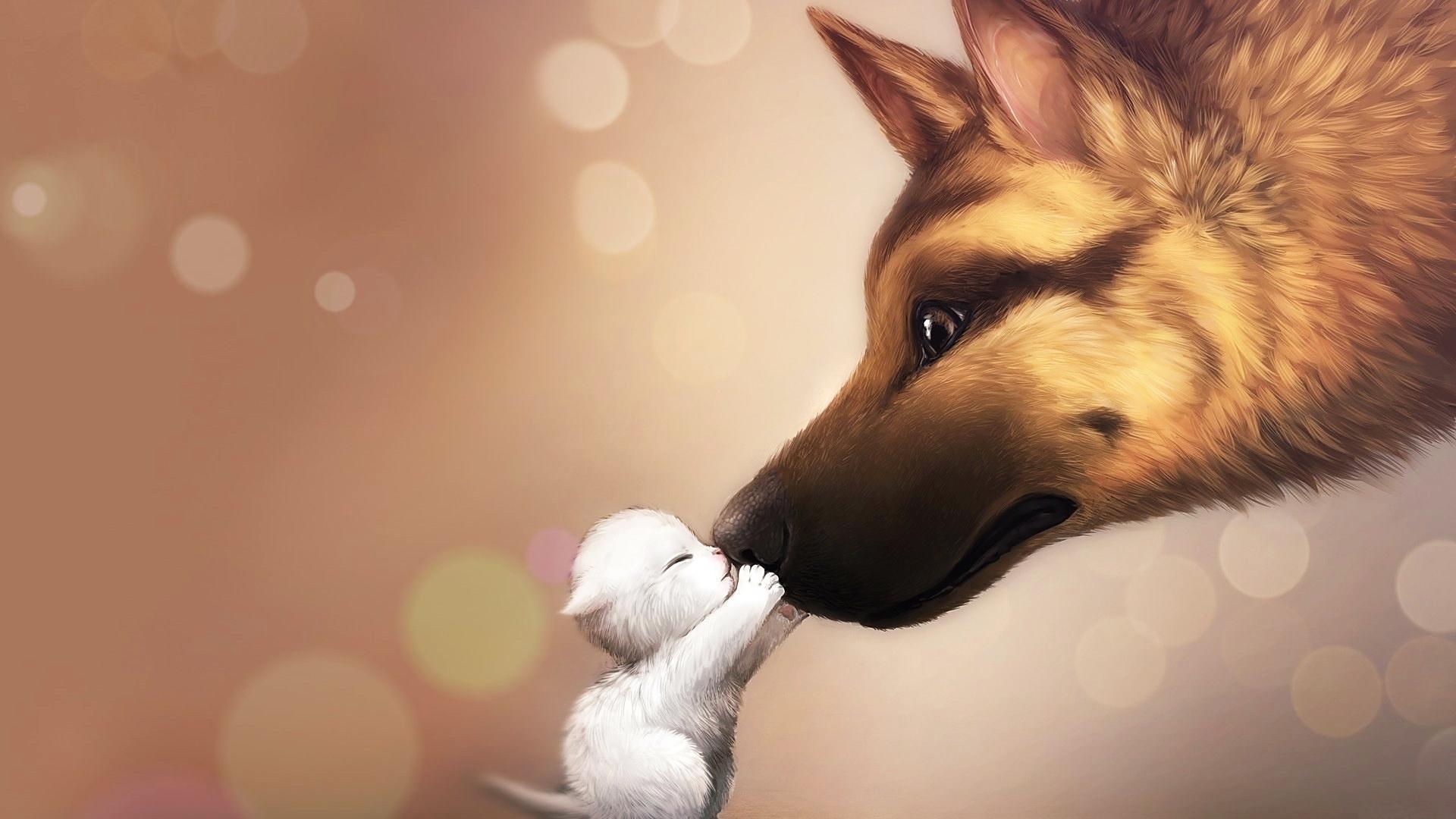 Baixar papel de parede para celular de Cães, Imagens, Animais, Gatos gratuito.