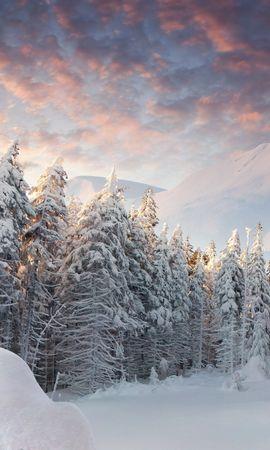 21813 скачать обои Пейзаж, Зима, Деревья, Горы, Снег, Елки - заставки и картинки бесплатно