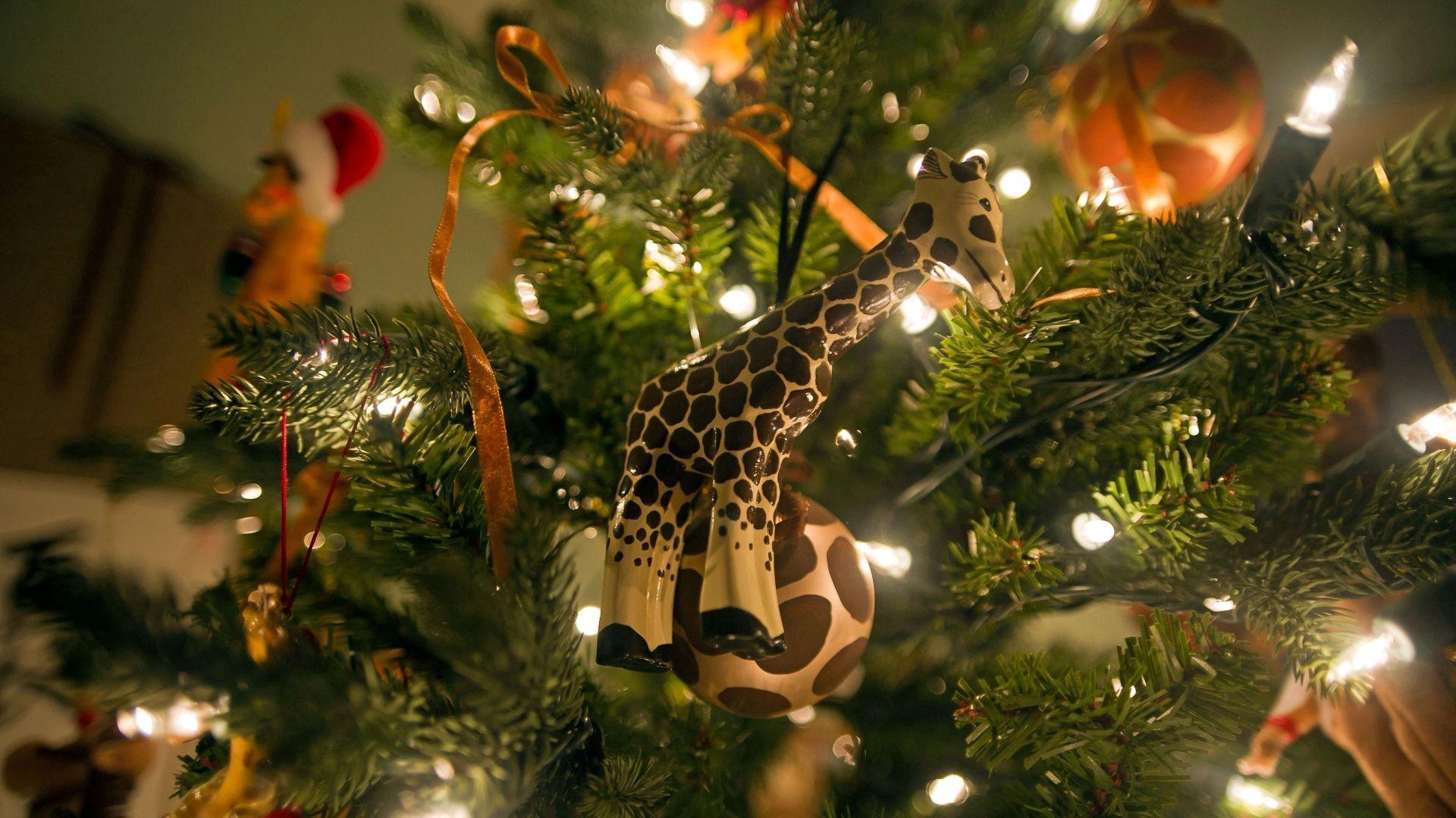 121641 免費下載壁紙 假期, 长颈鹿, 圣诞树, 礼物, 礼品, 新年 屏保和圖片