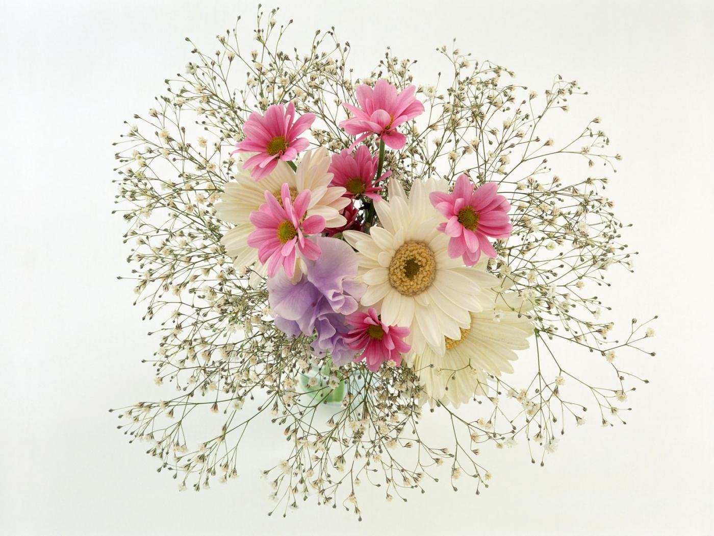 32125 скачать обои Растения, Цветы, Букеты - заставки и картинки бесплатно
