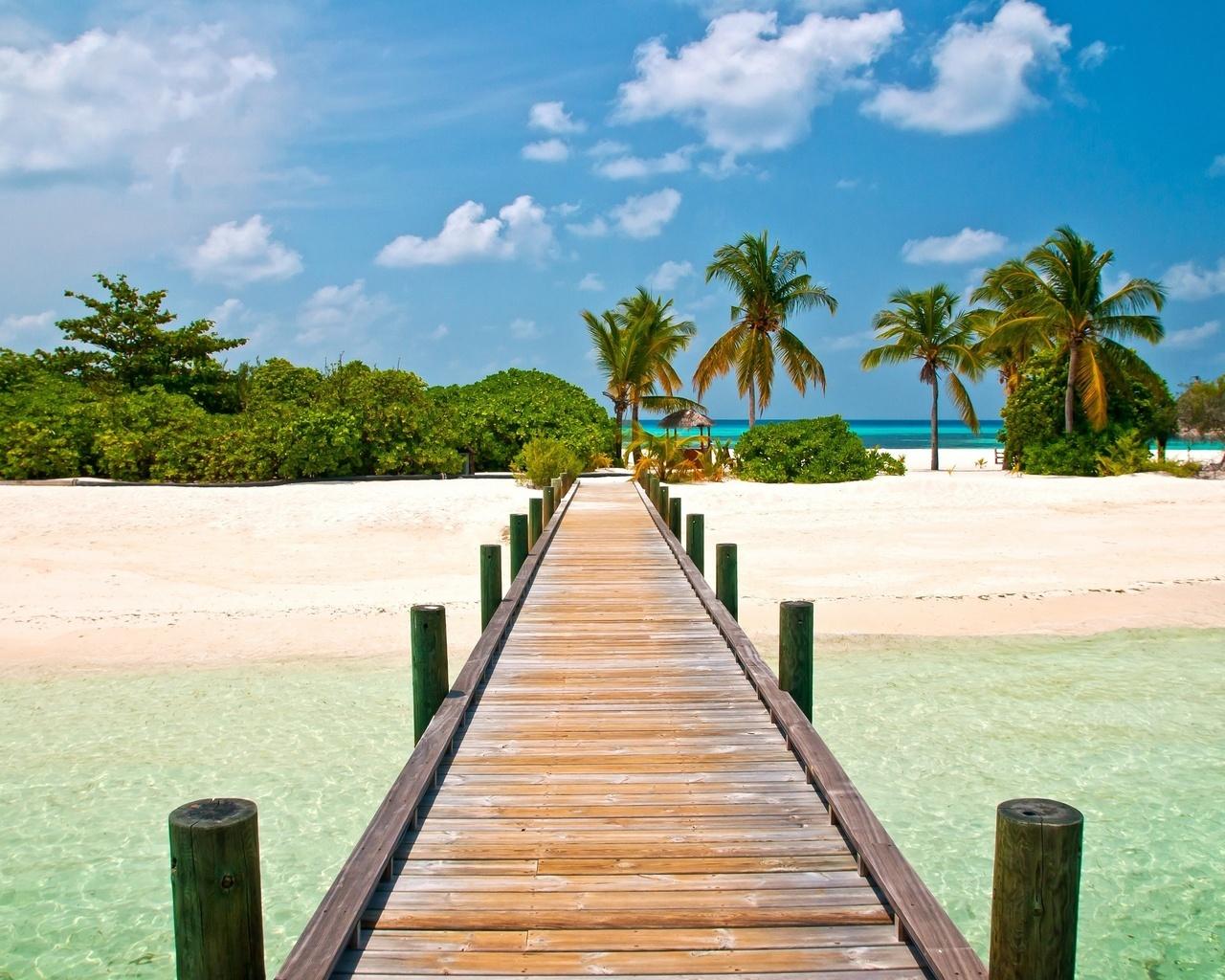 14395 скачать обои Мосты, Пейзаж, Пляж, Пальмы, Лето - заставки и картинки бесплатно