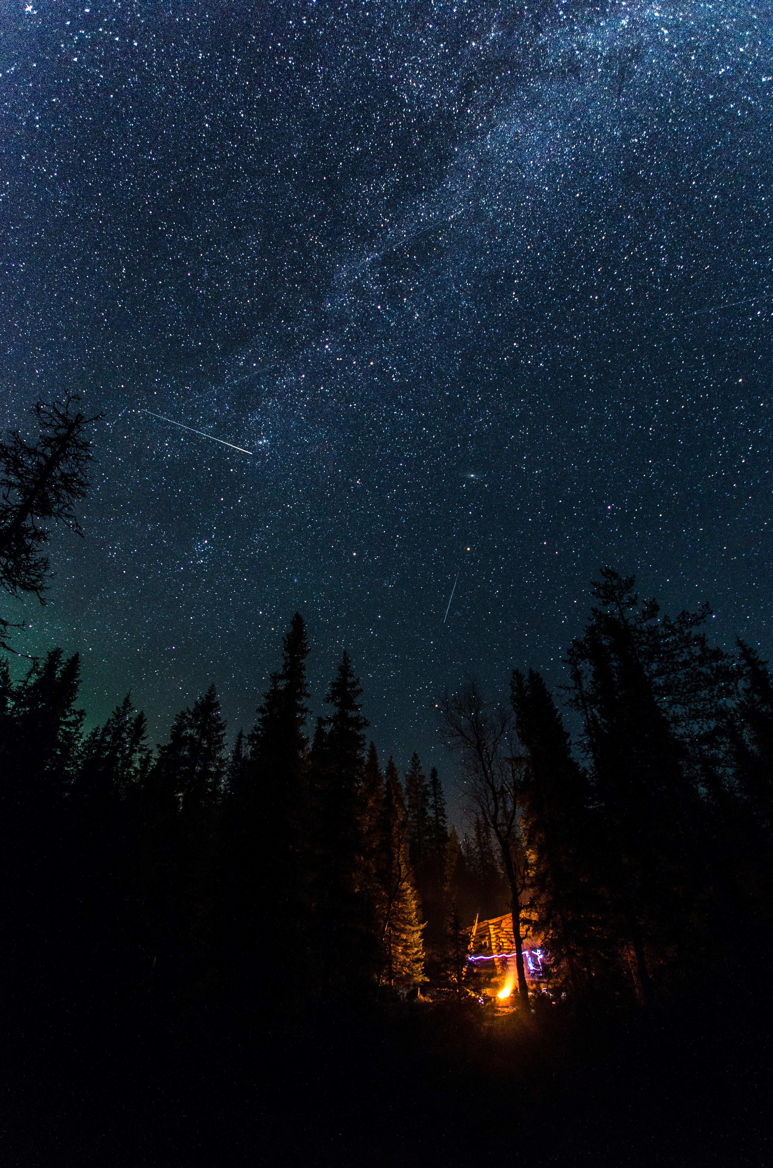 154165 скачать обои Темные, Ночь, Костер, Ель, Звездное Небо, Звезды - заставки и картинки бесплатно