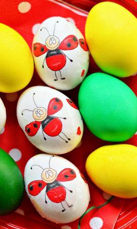 71929 скачать обои Праздники, Крашенные, Тарелка, Декорация, Пасха, Яйца - заставки и картинки бесплатно