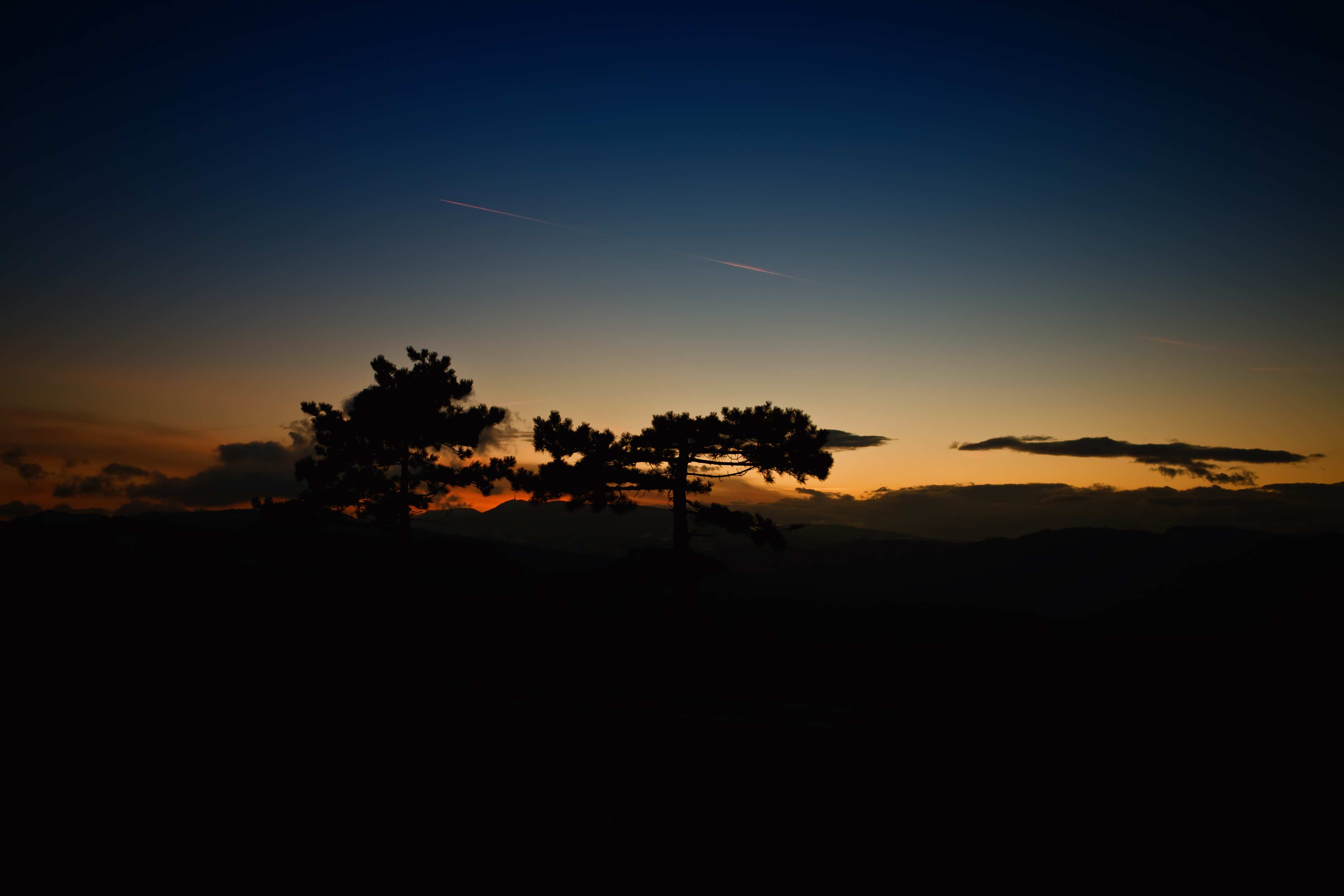 77583 free wallpaper 1080x2400 for phone, download images Trees, Sunset, Sky, Clouds, Horizon, Dark 1080x2400 for mobile