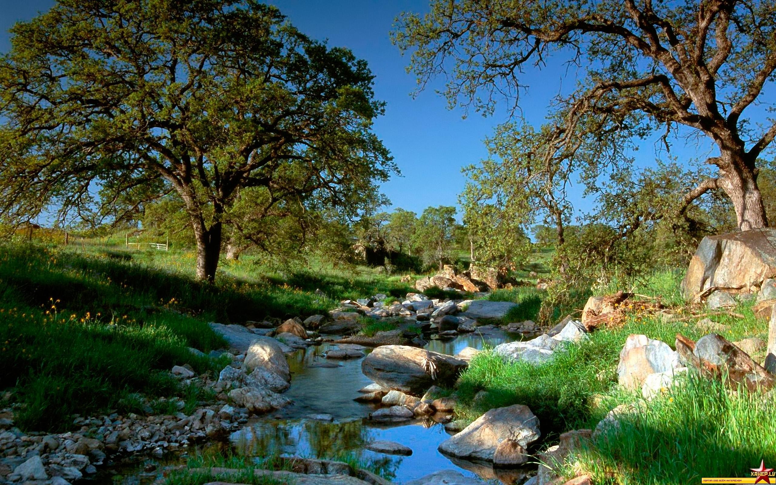 27280 скачать обои Пейзаж, Река, Деревья - заставки и картинки бесплатно