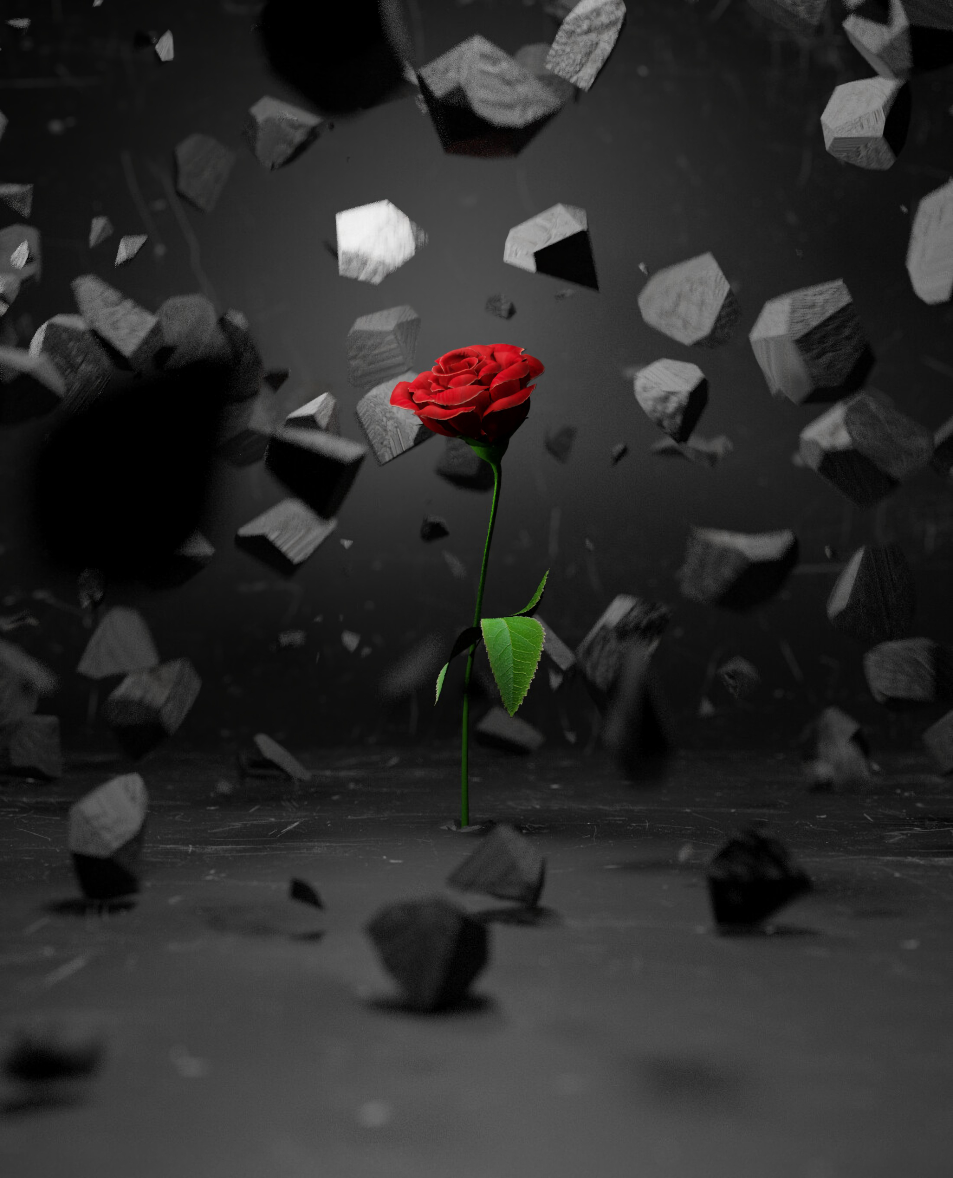 85736 download wallpaper 3D, Stones, Flower, Rose Flower, Rose, Shards, Smithereens screensavers and pictures for free