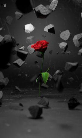 85736 Protetores de tela e papéis de parede 3D em seu telefone. Baixe 3D, Flor Rosa, Rosa, Pedras, Fragmentos, Pedacinhos, Flor fotos gratuitamente