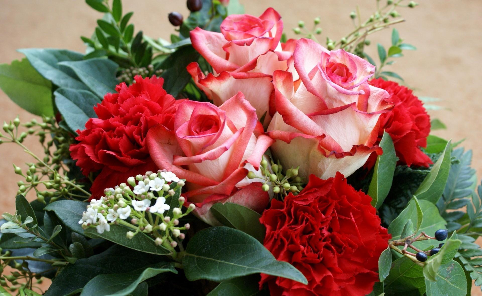 153689 Заставки и Обои Гвоздики на телефон. Скачать Цветы, Розы, Листья, Гвоздики, Букет картинки бесплатно