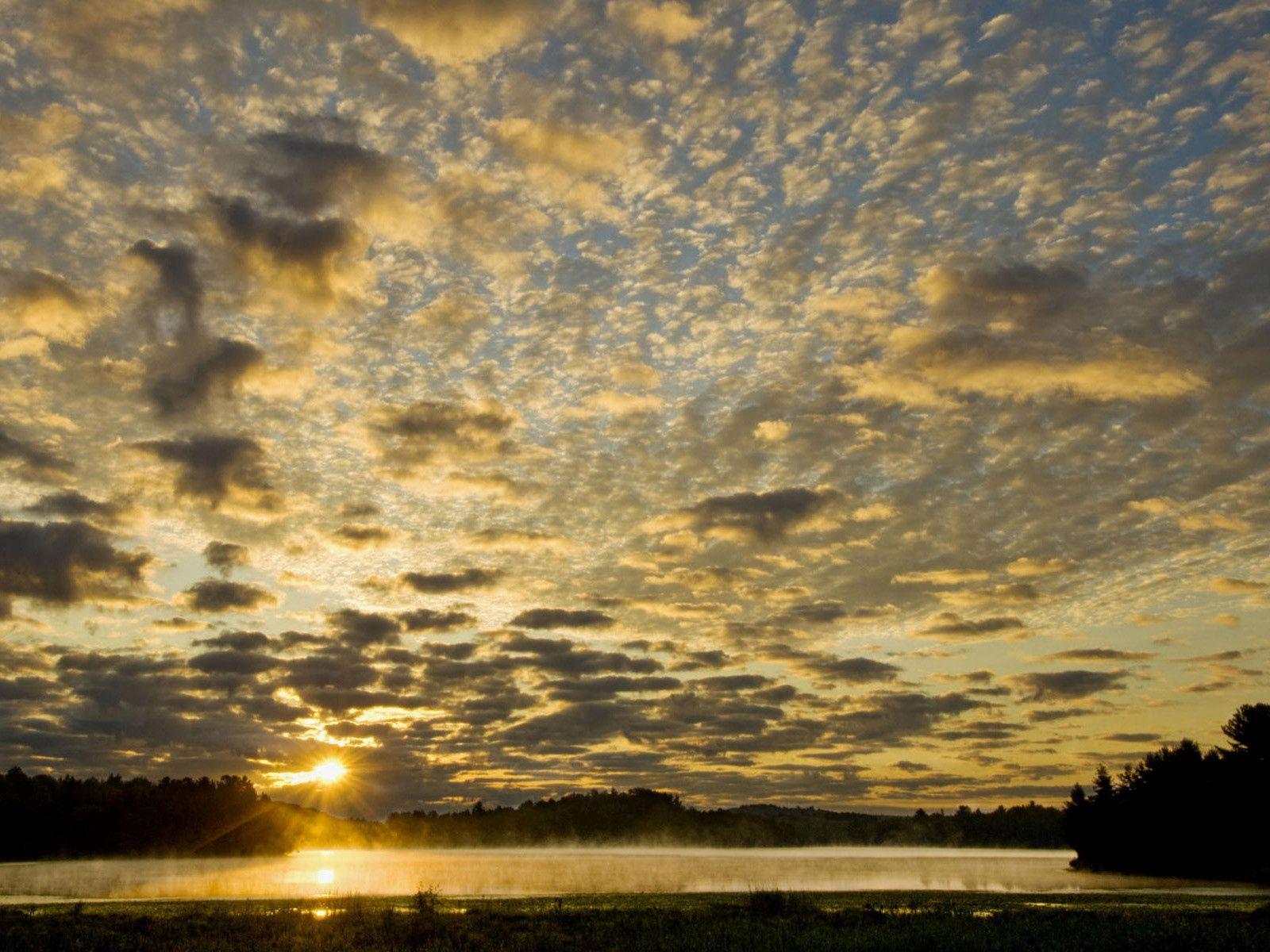 149367 скачать обои Природа, Горизонт, Утро, Туман, Солнце - заставки и картинки бесплатно