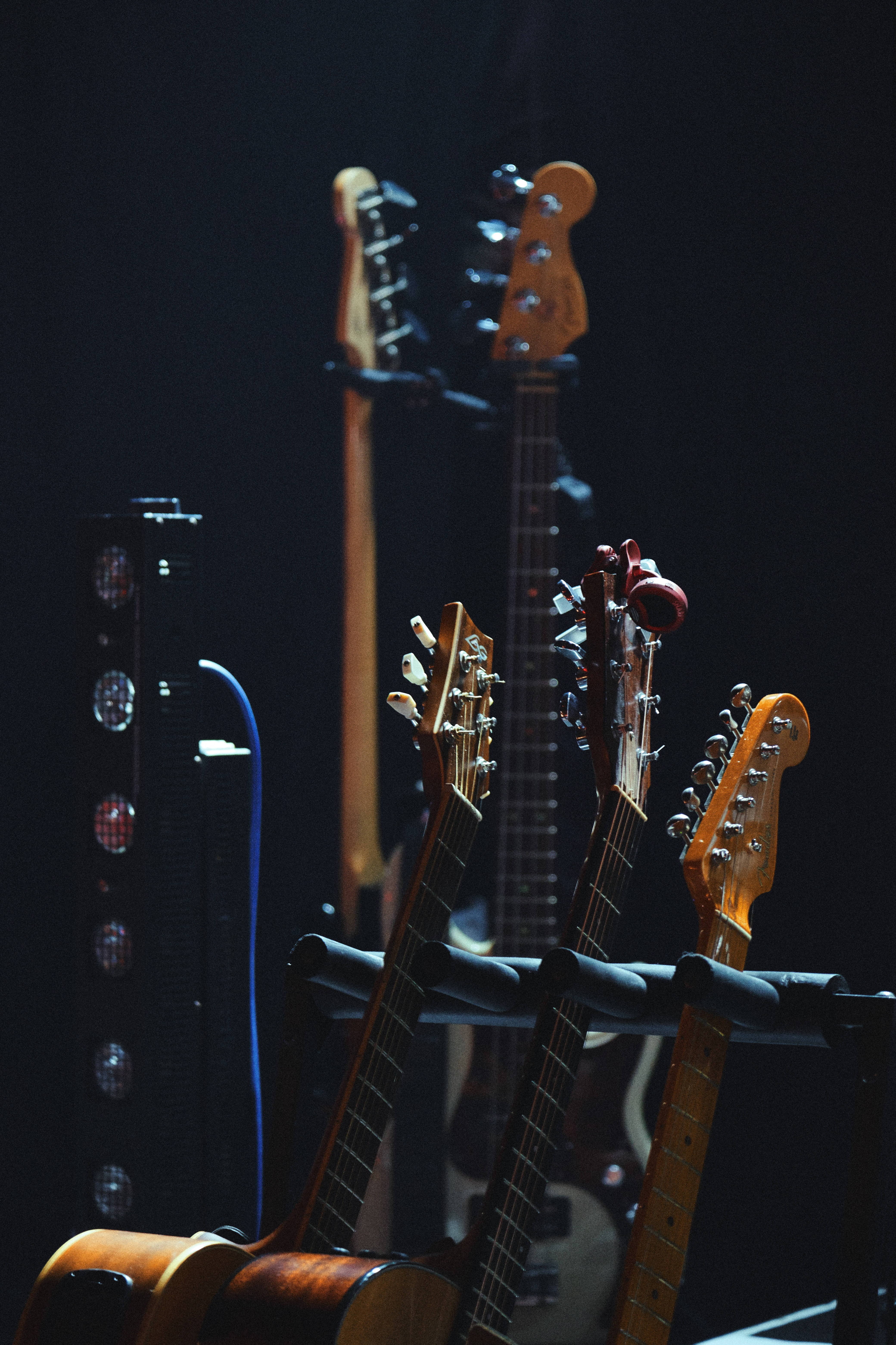 60514 download wallpaper Music, Guitars, Strings, Musical Strings, Vultures screensavers and pictures for free