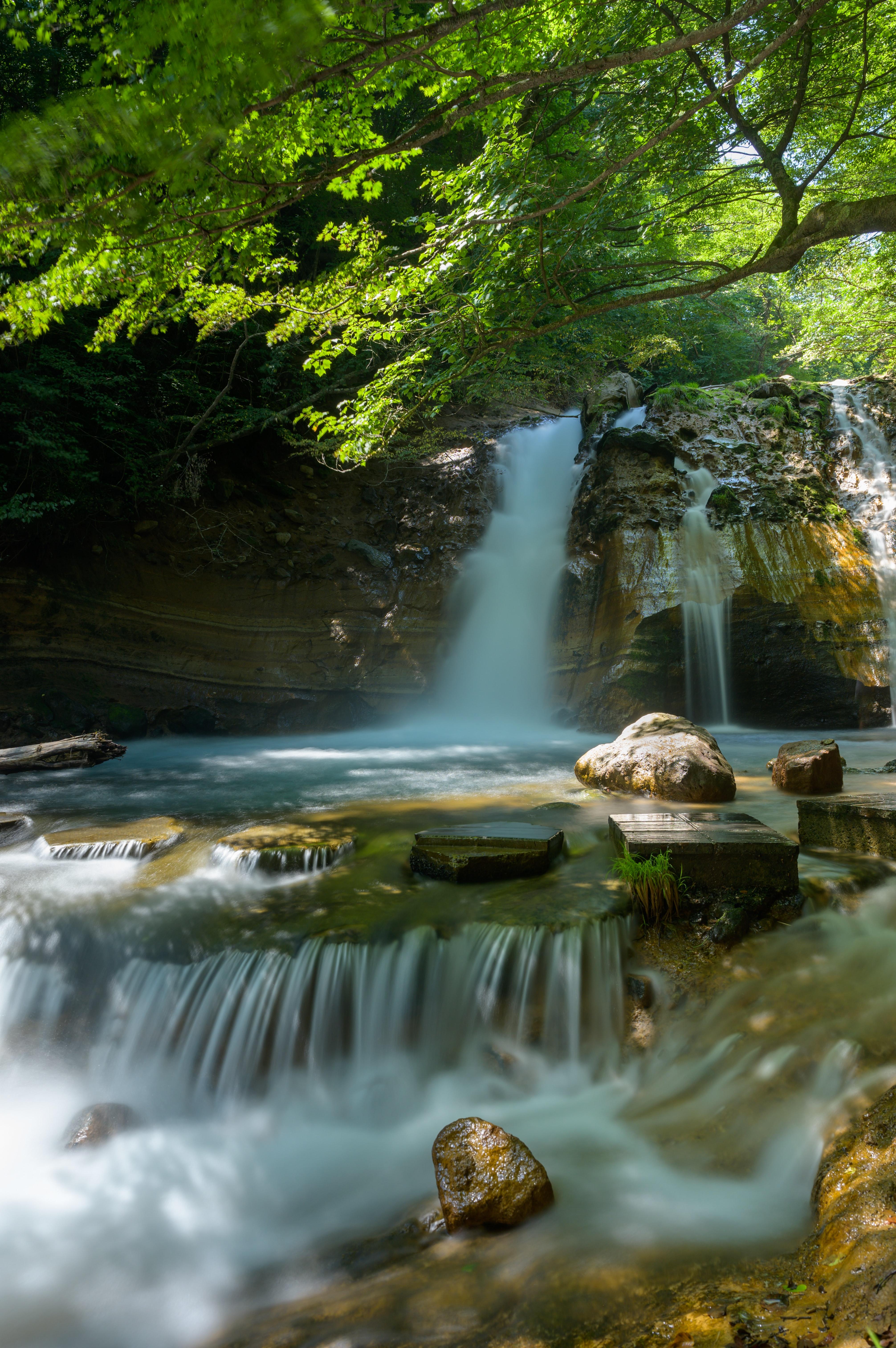 152937 скачать обои Камни, Природа, Деревья, Водопад, Ветка - заставки и картинки бесплатно