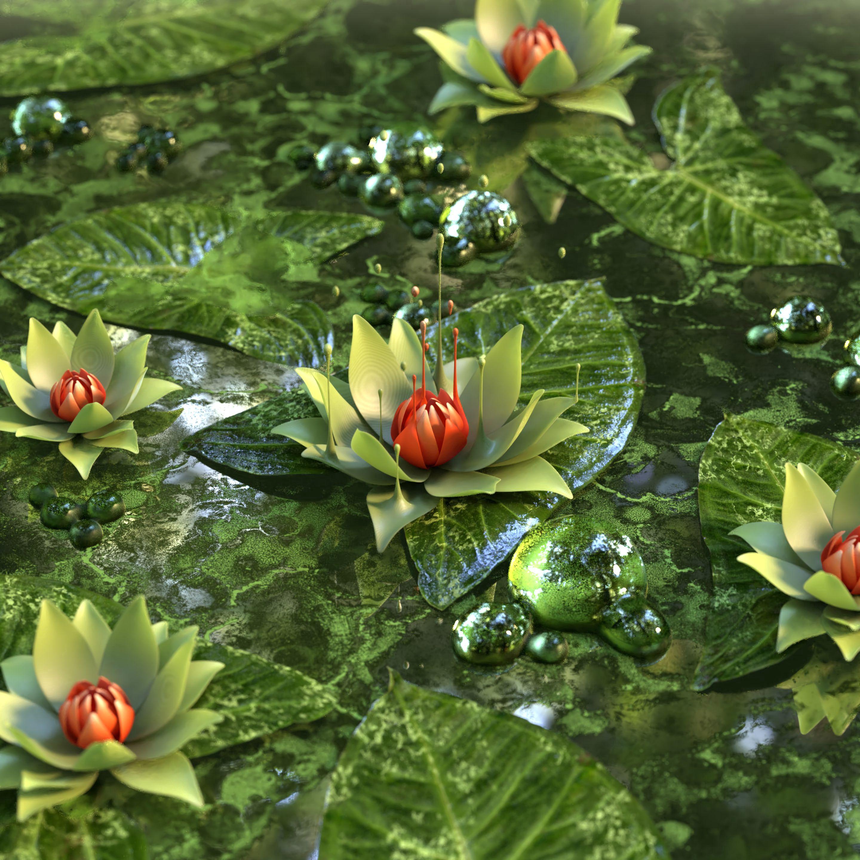 52898 скачать обои 3D, Цветок, Лотос, Кувшинка, Зеленый - заставки и картинки бесплатно
