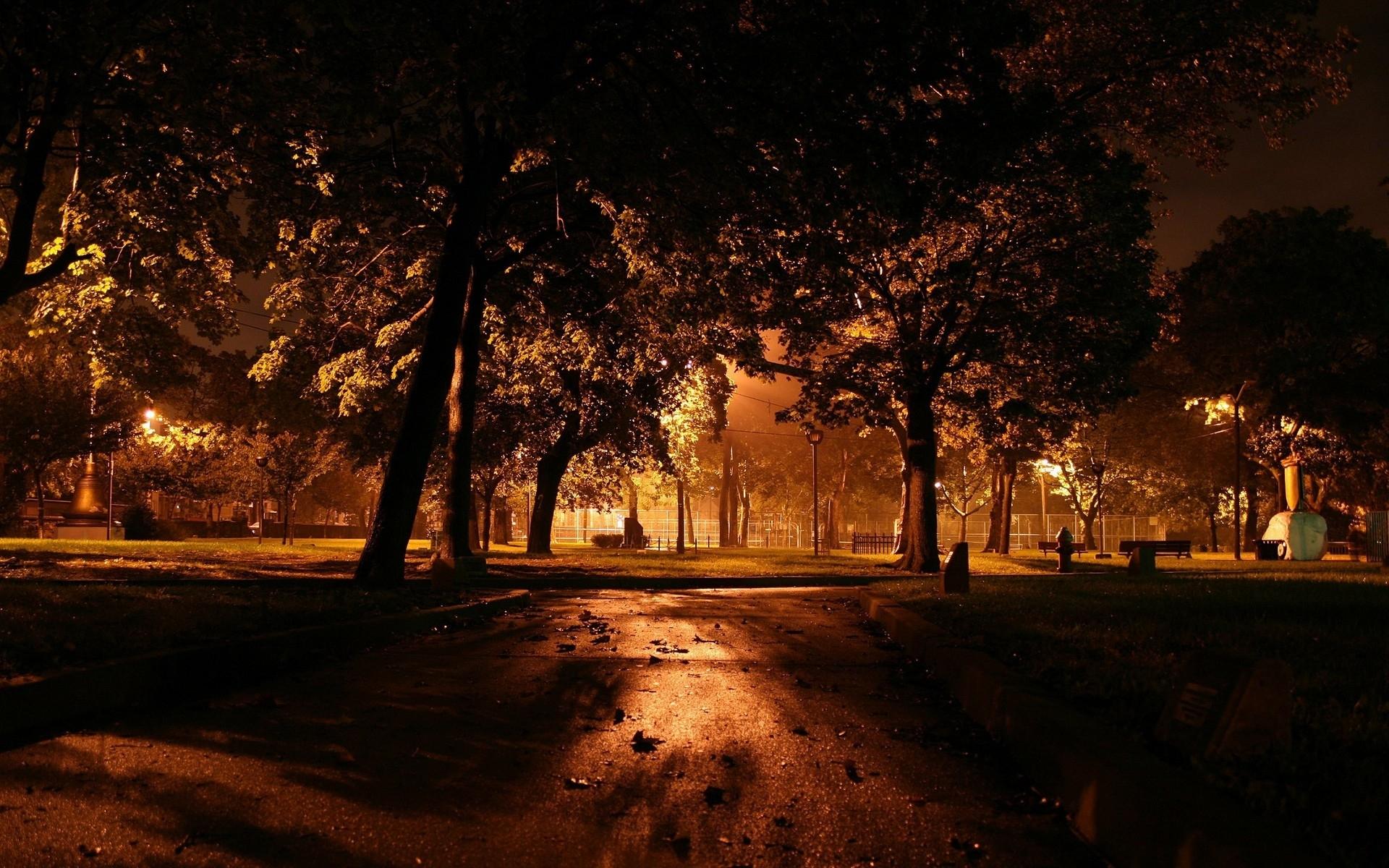Скачать картинку Ночь, Парки, Осень, Города, Растения, Деревья в телефон бесплатно.