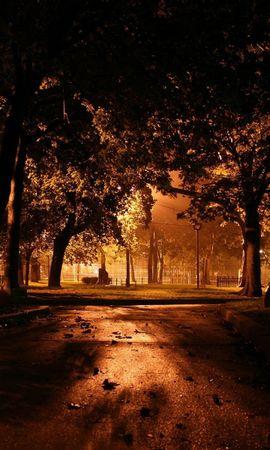 290 скачать обои Растения, Города, Деревья, Осень, Ночь, Парки - заставки и картинки бесплатно
