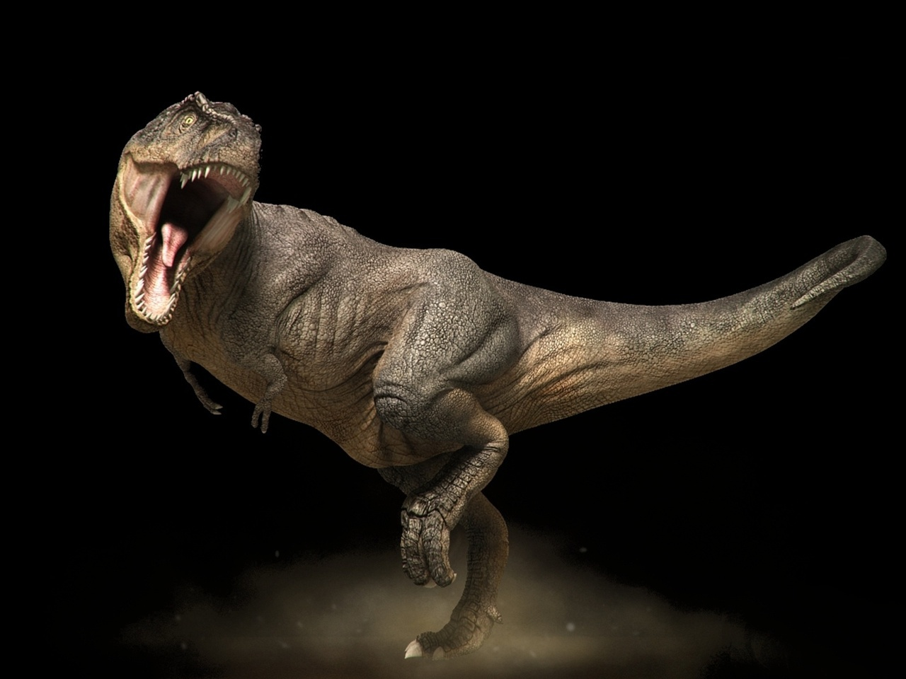 36623 download wallpaper Animals, Dinosaurs screensavers and pictures for free