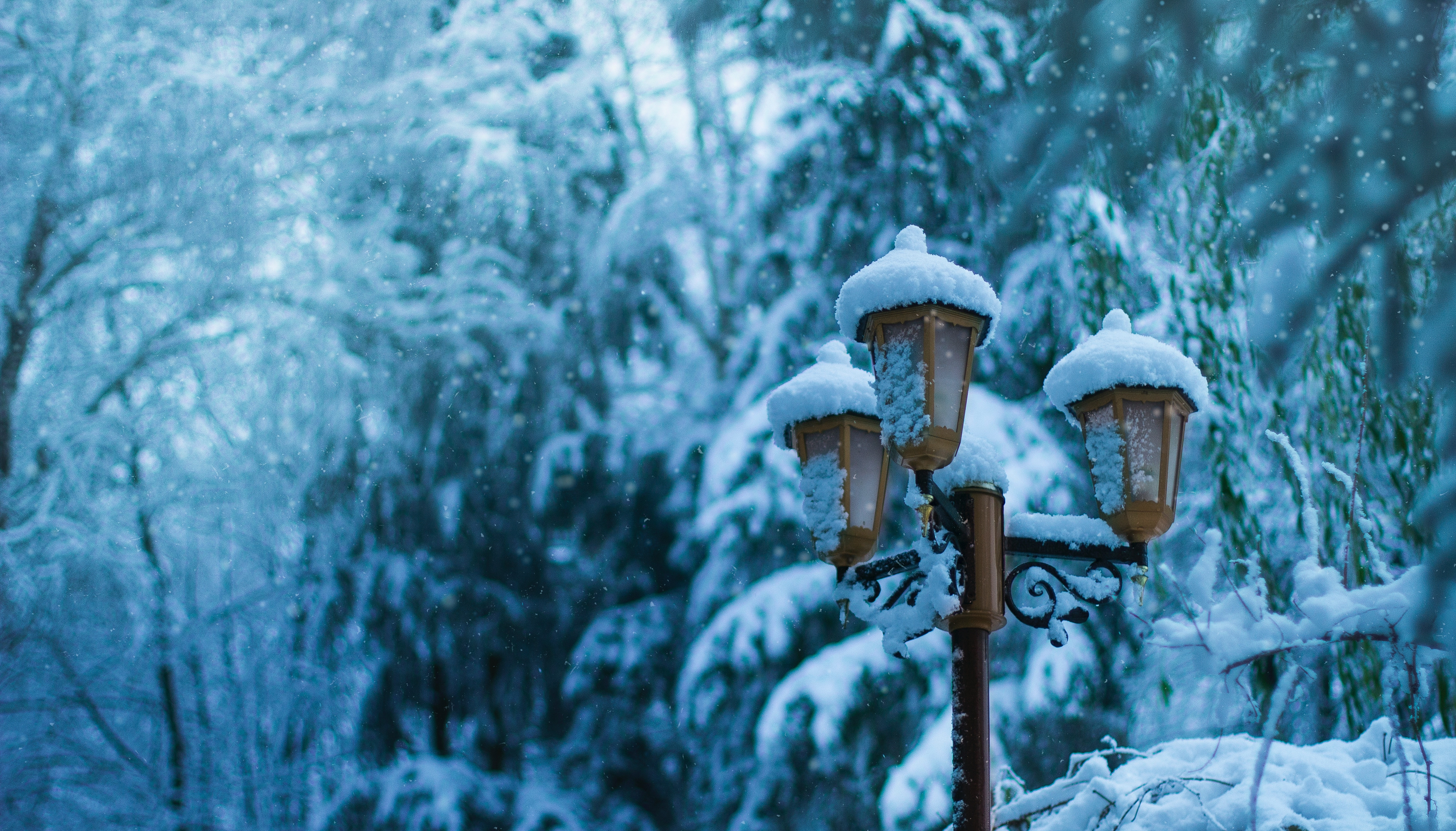 137705 Screensavers and Wallpapers Lamp for phone. Download Winter, Snow, Miscellanea, Miscellaneous, Lamp, Lantern, Pillar, Post pictures for free
