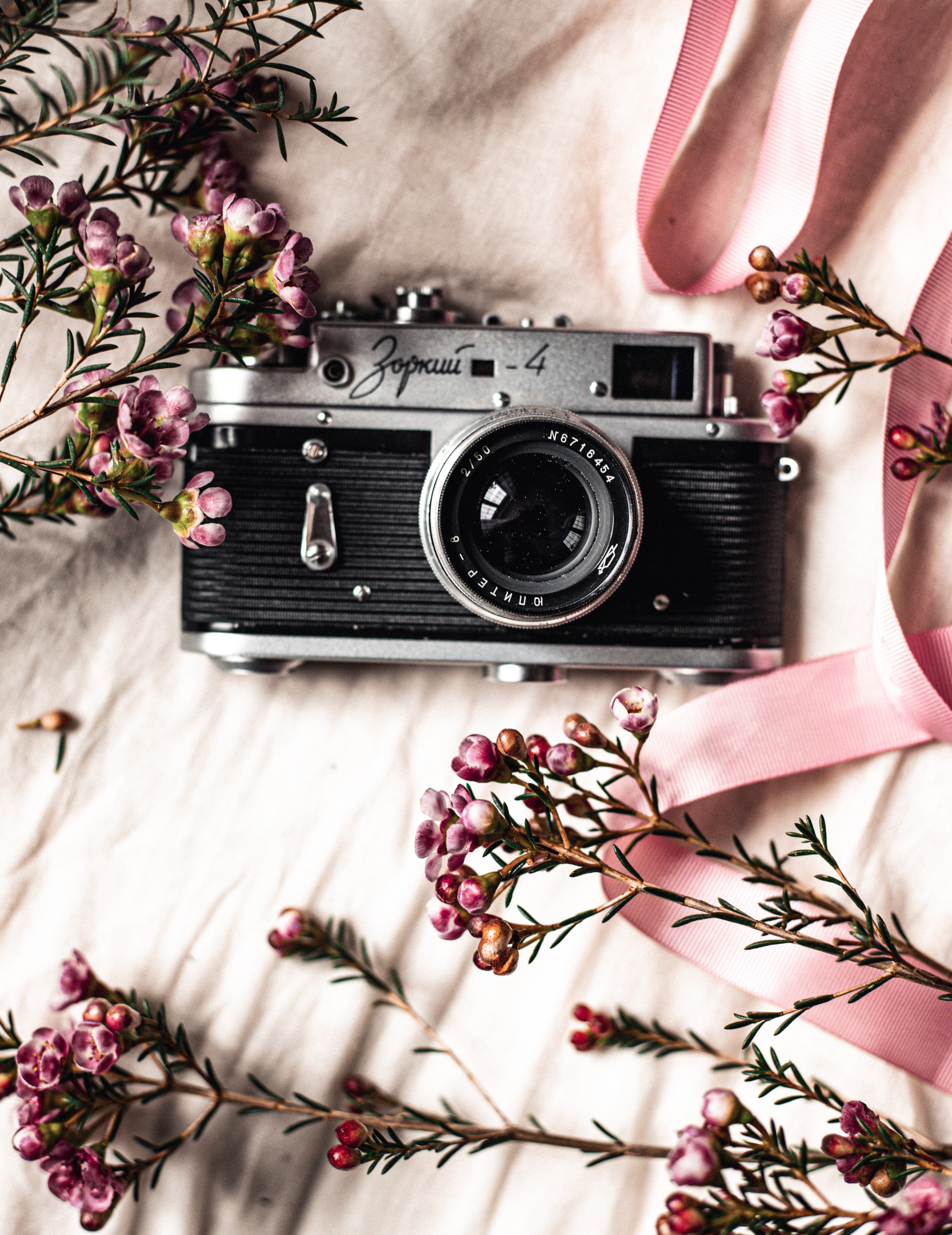 84110 Screensavers and Wallpapers Lens for phone. Download Flowers, Miscellanea, Miscellaneous, Retro, Lens, Camera pictures for free