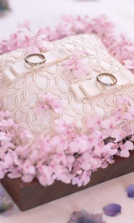 1462 download wallpaper Holidays, Wedding, Rings screensavers and pictures for free