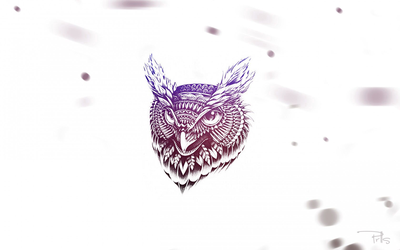 57758 download wallpaper Owl, Art, Feather, Vector, Face screensavers and pictures for free
